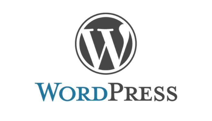 Pourquoi wordpress est le meilleur logiciel pour créer un site internet professionnel